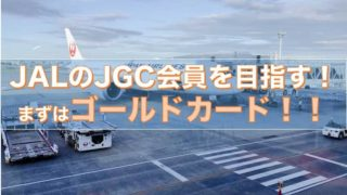 JAL ゴールド