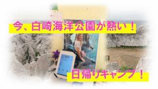 白崎海洋公園キャンプブログ